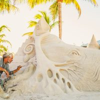 Artist sculpting rhinoceros sand art