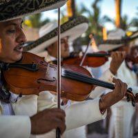 Mariachi band plays violin
